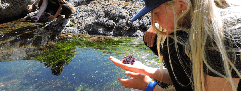 Girl holding a sea urchin