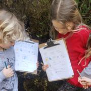 kids doing school outside